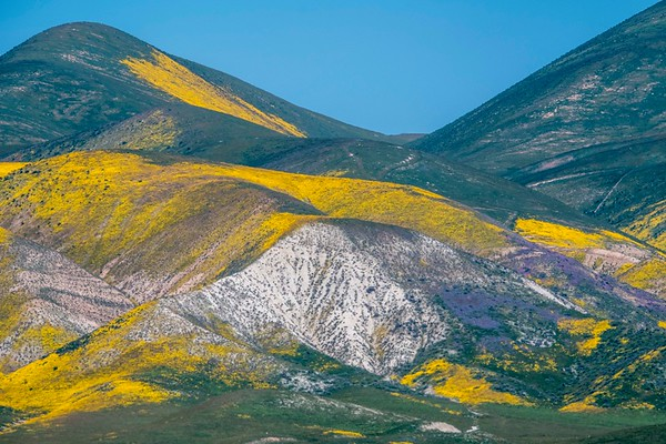Carrizo Plain National Monument, CA