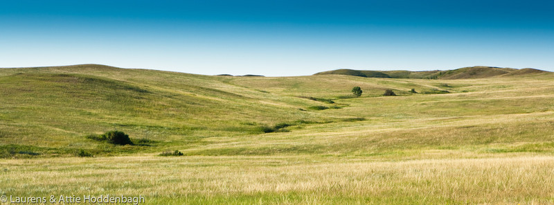 Grassland in Theodor Roosevelt NP, North Unit, ND  Filename: CEM009453-TRNP-ND-USA.jpg