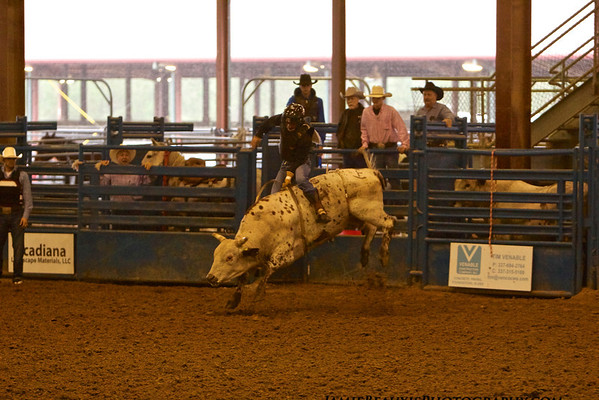 BULLRIDING-all riders