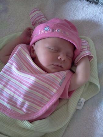 Baby Alea