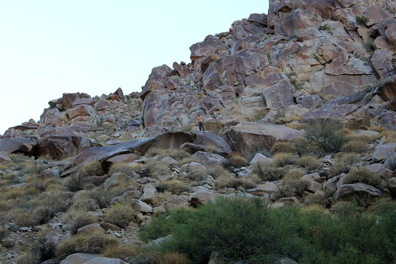 05 Cougar Canyon (155).JPG