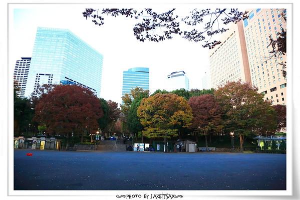 20181124 Day12 東京