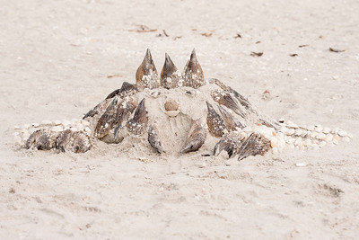 Jan. 29, 2017 - Sand Sculptures