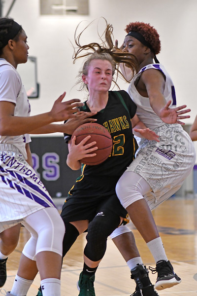 20190202 Girls Basketball Cecil College at Montgomery College