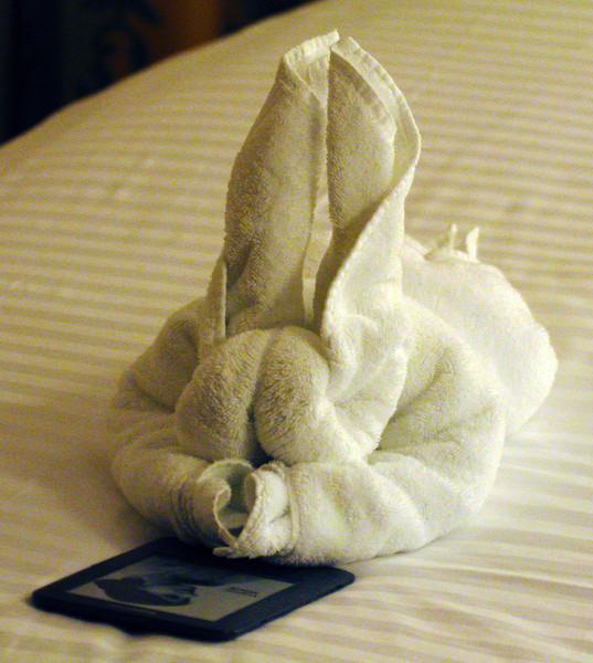 towelrabbit.jpg