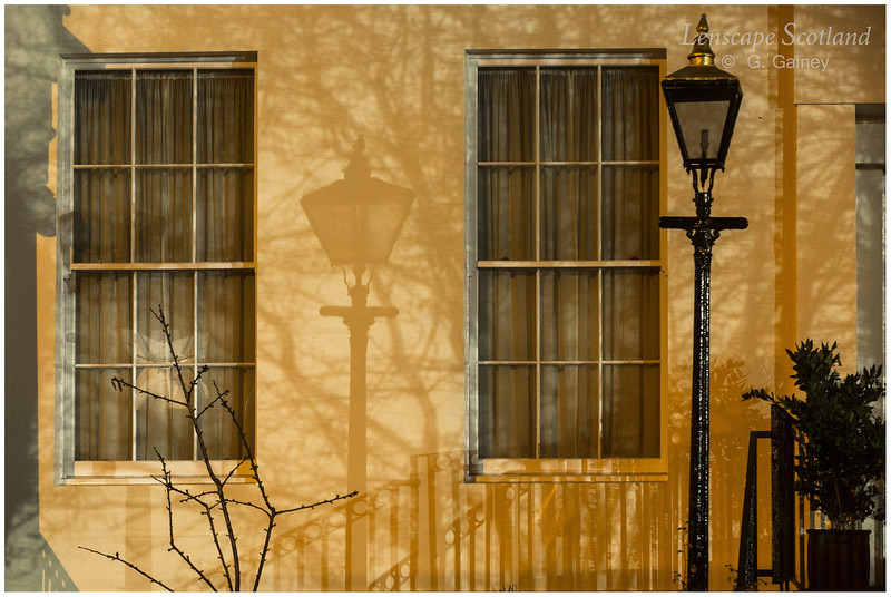 Lamp and shadow, Inverleith Row