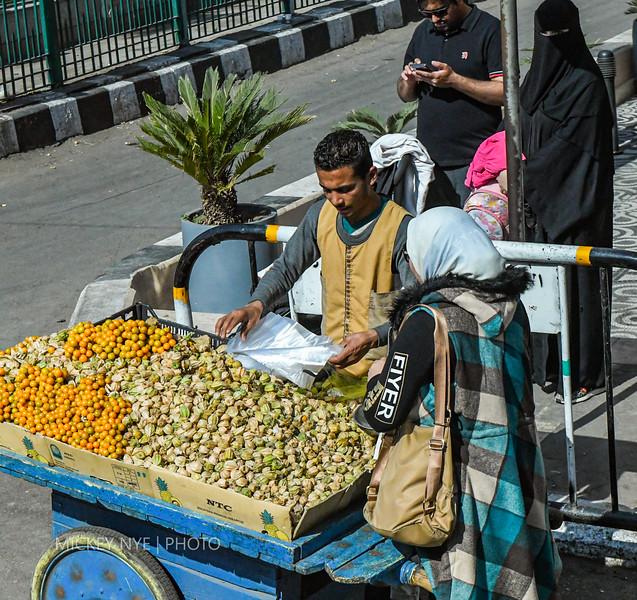 021320 Egypt Day12 Luxor Cairo Pres Palace Hawass-2273.jpg
