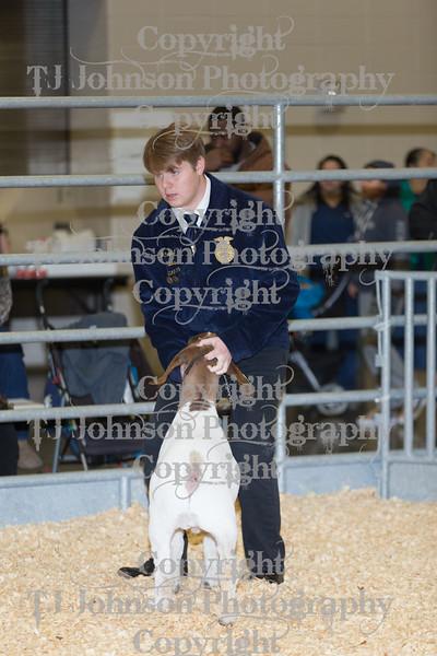 2019 KISD Goat Show
