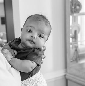 Baby Rose 2019