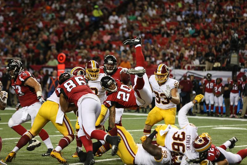 Falcons--12.jpg
