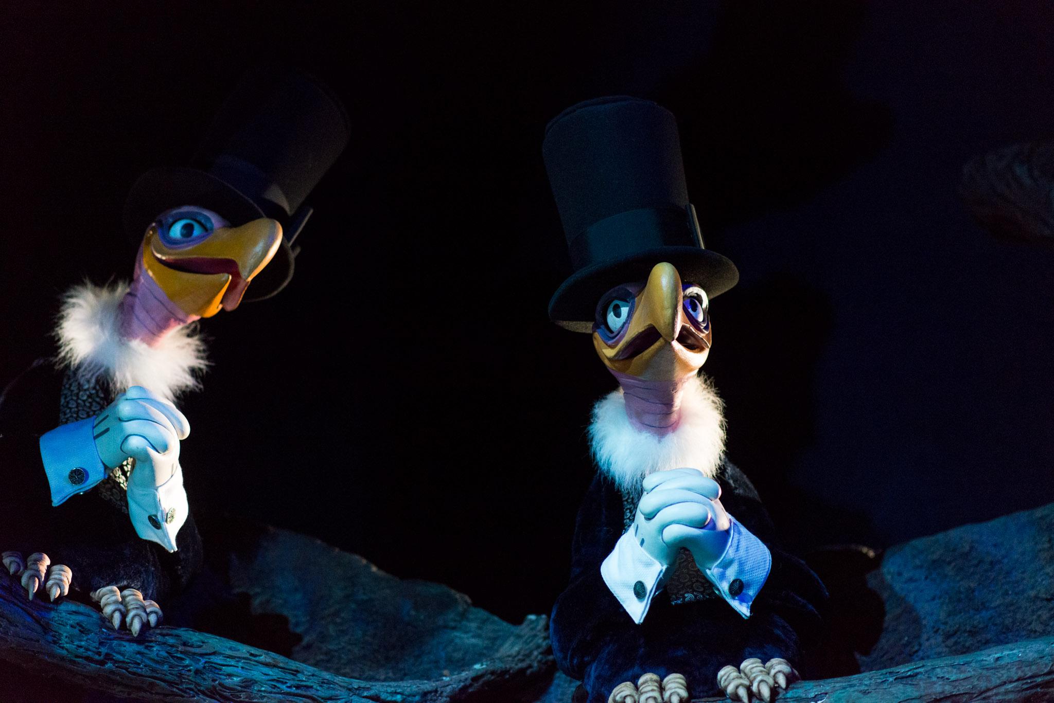 Vultures - Walt Disney World Magic Kingdom