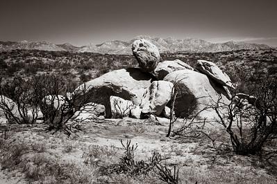 Anza Borraga Desert, CA [Travel Photography]