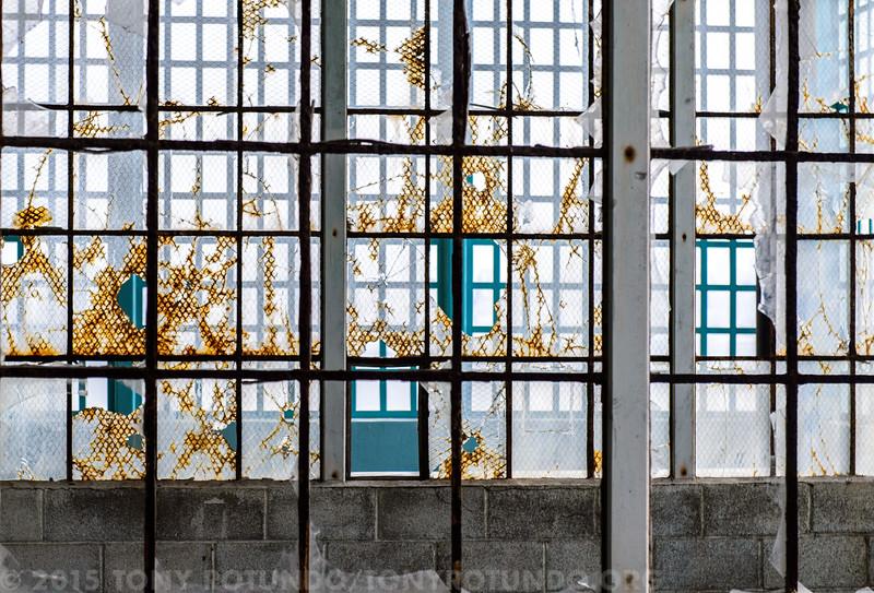 2015 FUN: Ai Wei Wei