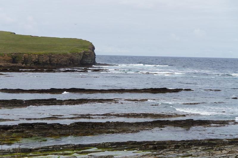 Brough of Birsay, Orkney - 20.jpg