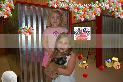 2009 DAISY PUPPIES  Photo and Video Galleries PRT 1