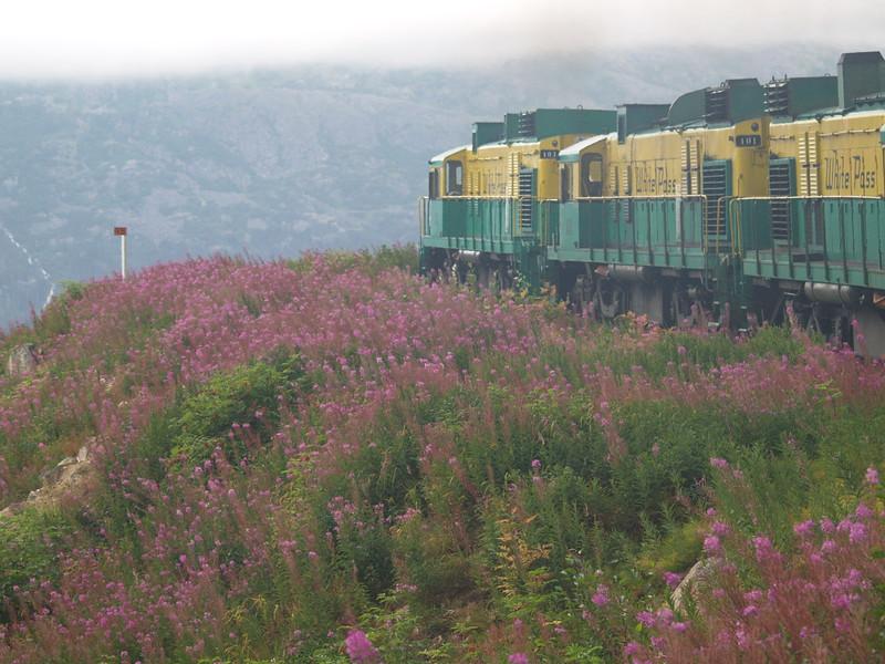 White Pass & Yukon Railroad
