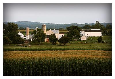 Lancaster County, Pennsylvania Aug 2007