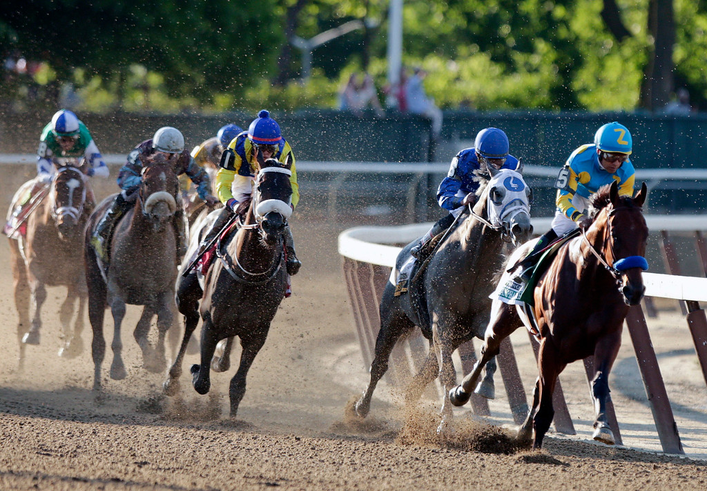 . American Pharoah, with Victor Espinoza up, rounds the fourth turn at the 147th running of the Belmont Stakes horse race Saturday, June 6, 2015, in Elmont, N.Y.  American Pharoah led all the way to win the Belmont Stakes by 5  lengths on Saturday, becoming the first horse in 37 years to sweep the Kentucky Derby, Preakness and Belmont Stakes  one of the sporting world\'s rarest feats.  (AP Photo/Frank Franklin II)