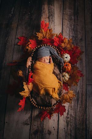Harold Ebke Newborn Sept 2020