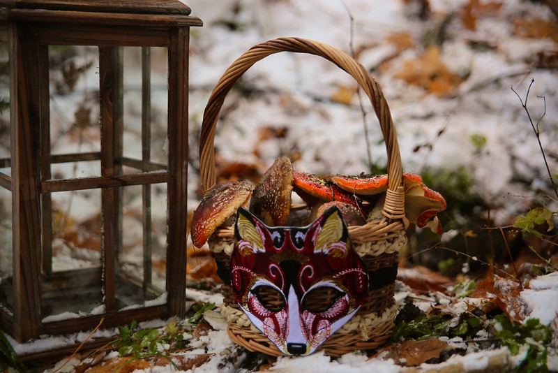 Treasure Of Christmas Wonderland