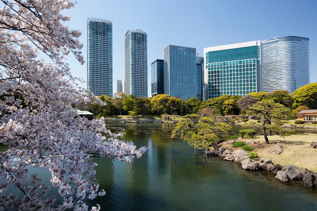 Hama Rikyu Garden, Tokyo