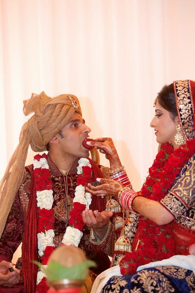 Le Cape Weddings - Indian Wedding - Day 4 - Megan and Karthik Ceremony  79.jpg