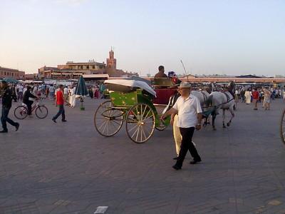 Marocco 042010 Final