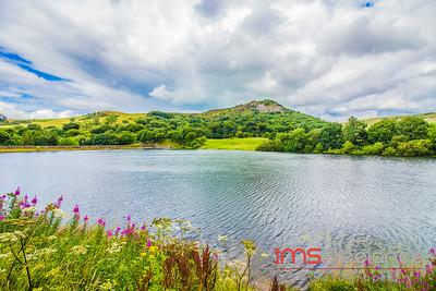 Tegg's Nose Reservoir & Bottoms Reservoir (Cheshire)