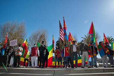 26March 2021 - Grand Protest Rally for Ethiopia