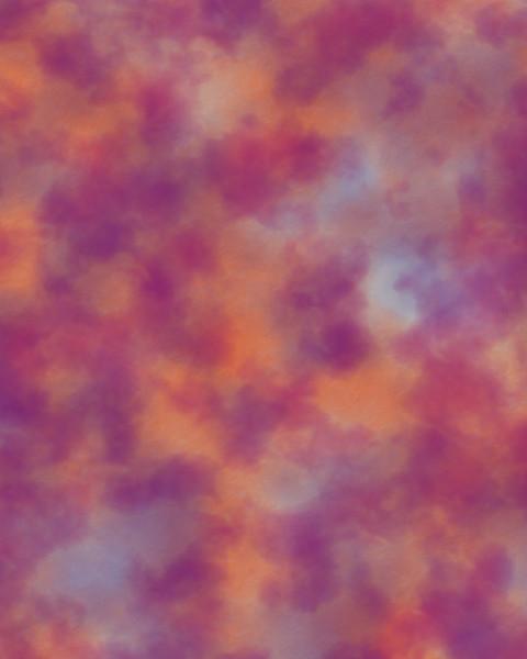 Deep Red Variations.jpg