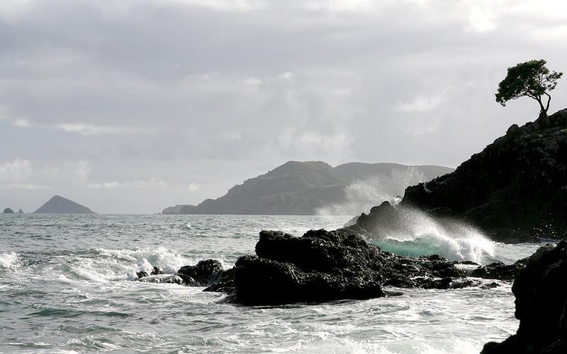 Taurangi Bay