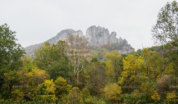 USA, WV - Seneca Rocks