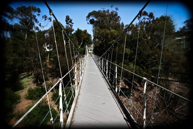 Spruce Street Bridge 14.jpg