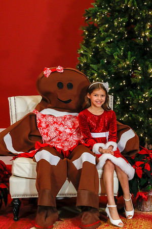 Gingerbread Man 2018