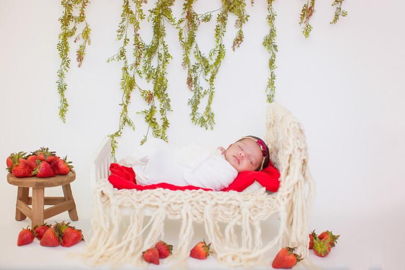 newport_babies_photography_newborn-5618.jpg