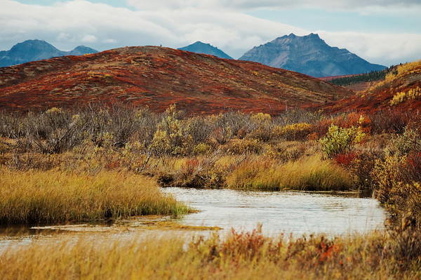 Mountain Vista/Savage River