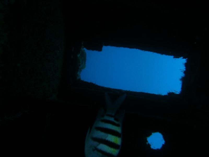 2008 Jan 03 039.JPG