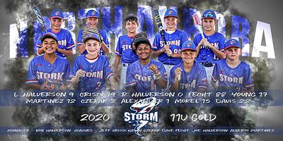 2020 Aurora Storm Team Banner