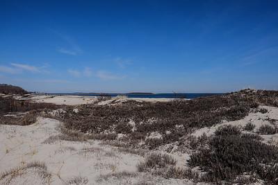 Sand Dune Hikes