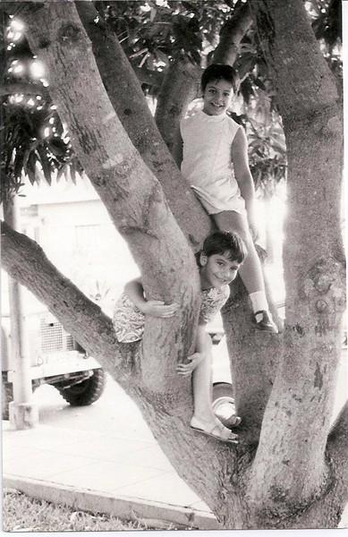 1971 - Nani e Zezinha