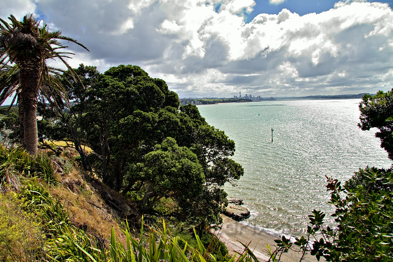 Auckland from Achilles Point