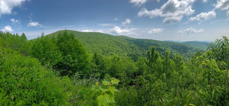 Graveyard Ridge Trail -- 5,520'