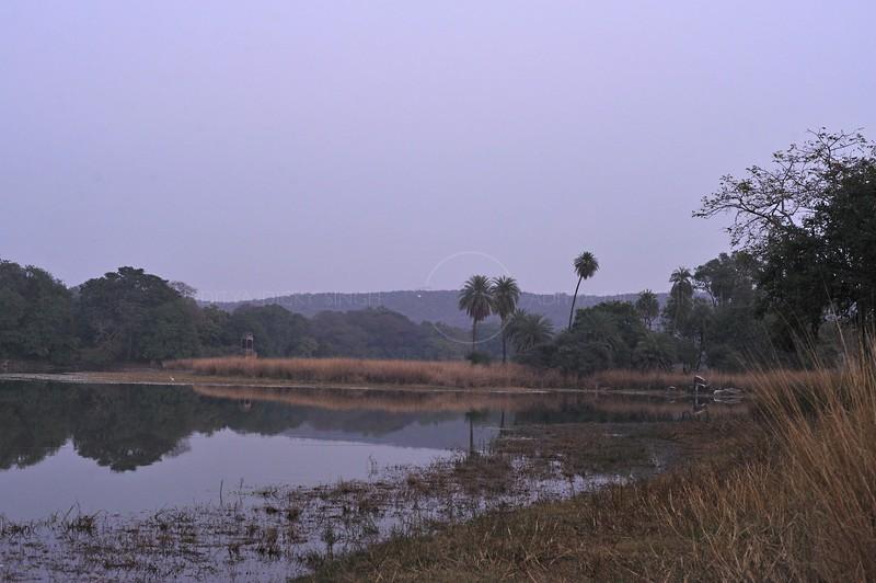Rajbagh lake in Ranthambhore national park