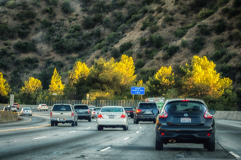August 15 - The 405 South_ Los Angeles.jpg