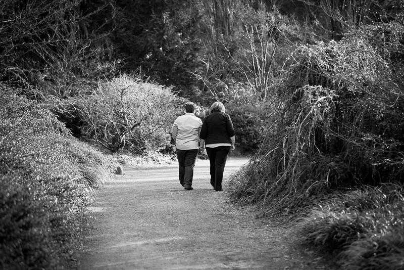 ALoraePhotography_Marla+Bonnie_Engagement_20151229_005.jpg