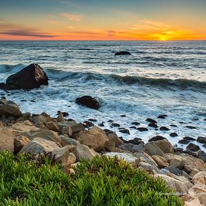 California_Beauty