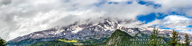 MT RAINIER NP