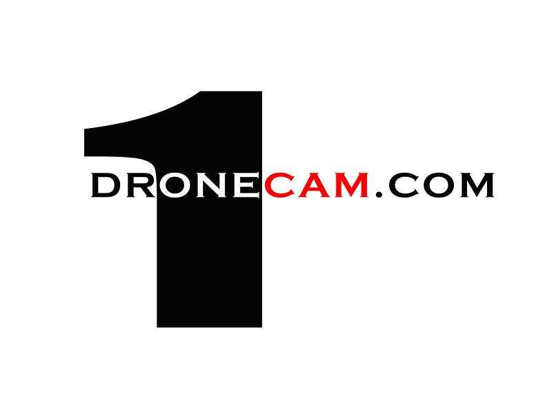 dr1cam logo.jpg