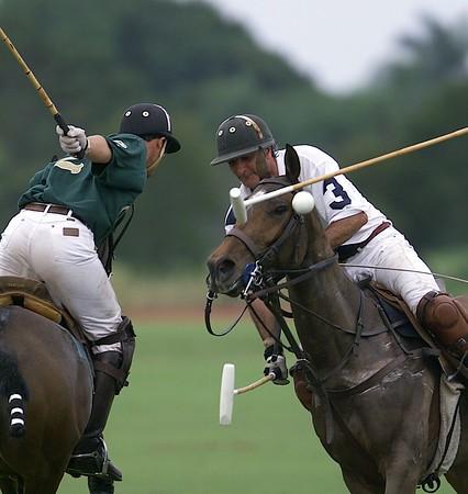 Royal Palm Polo Editor's Select for 2002
