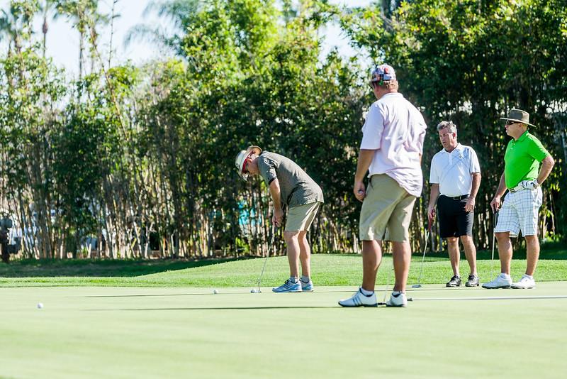 Golf459.jpg